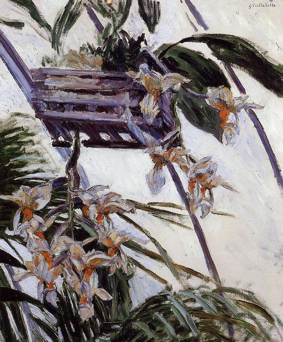 Орхидеи, холст, масло по Gustave Caillebotte (1848-1894, France)