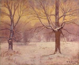 Theodore Clement Steele - Winter Днем , Jordan Поле