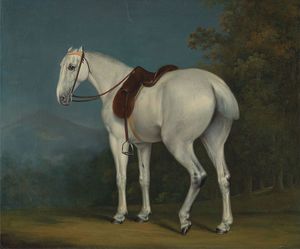 Jacques Laurent Agasse - Lady-s серый охотник