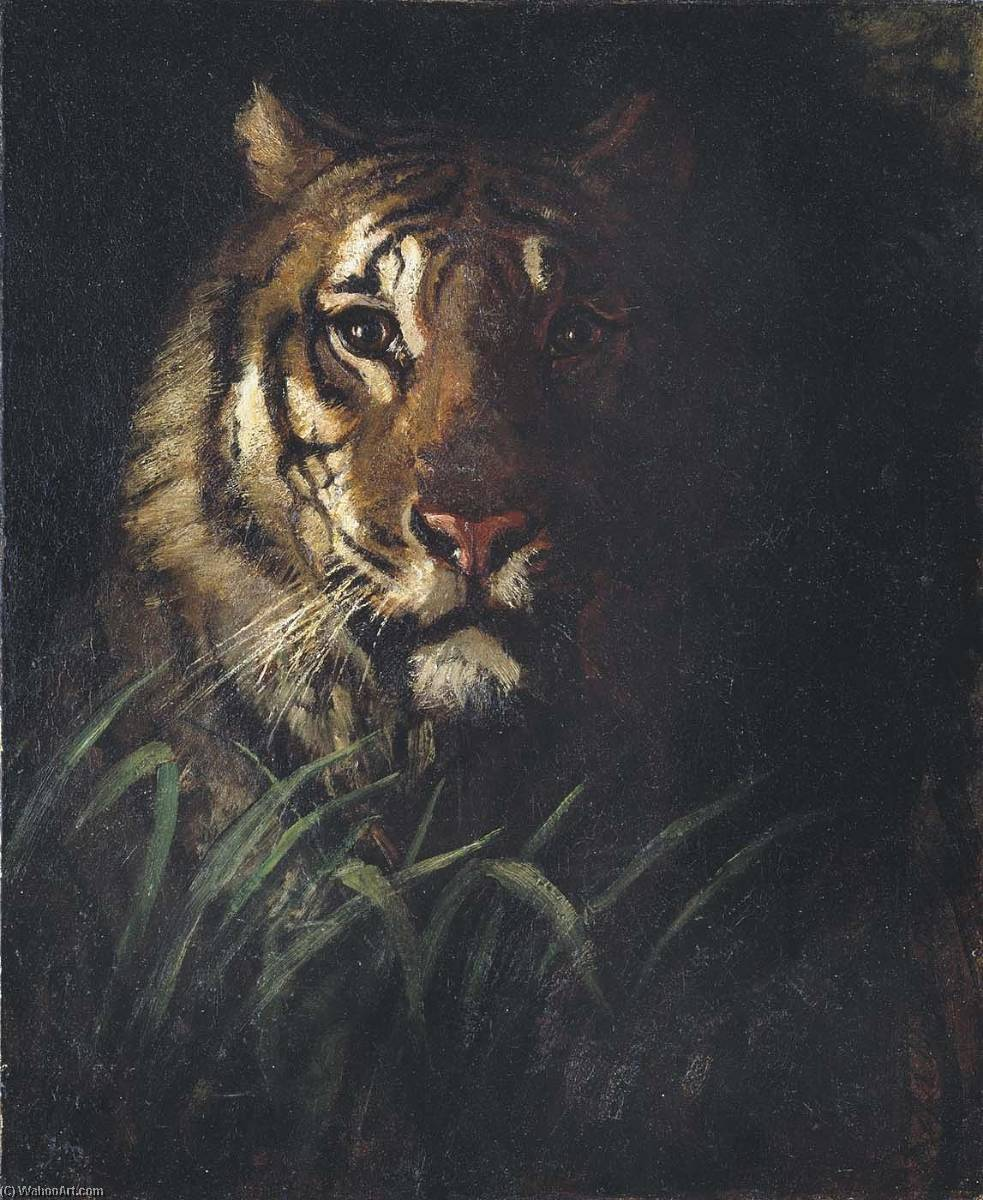 Tiger's Голова, холст, масло по Abbott Handerson Thayer (1849-1921, United States)